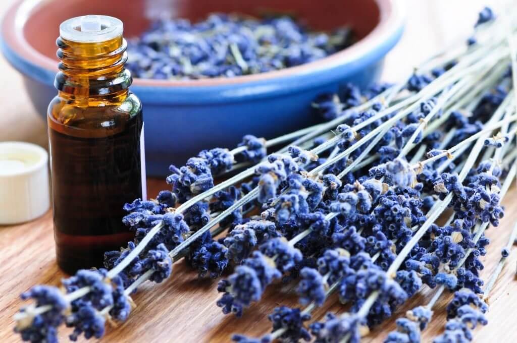 Lavendelöl mit Lavendelstrauss