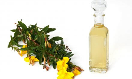 Nachtkerzenöl mit Gamma Linolensäure